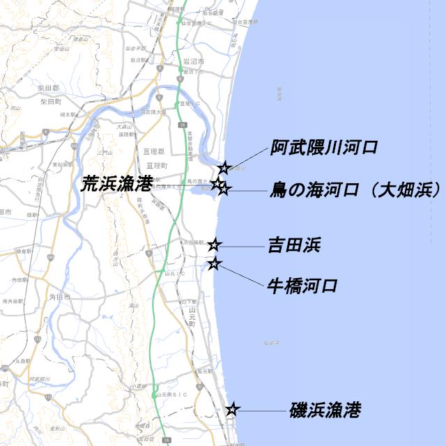 仙南 サーフ ヒラメ